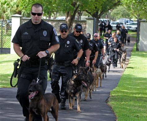miami police dogs  life saving gear