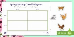 Spring Animals Shape Sorting Worksheet    Activity Sheet