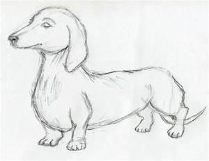 Pencil Drawings Of Animals Simple Easy Animal - Litle Pups