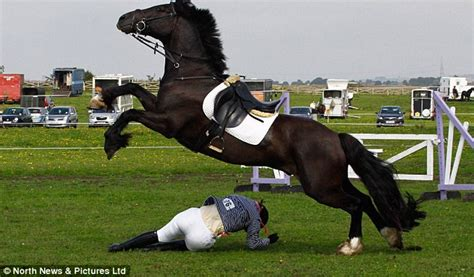 dangerous  horse riding   covered  case