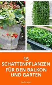 Blumen Für Schattigen Balkon : 15 schattenpflanzen f r balkon und garten balkon ~ Frokenaadalensverden.com Haus und Dekorationen