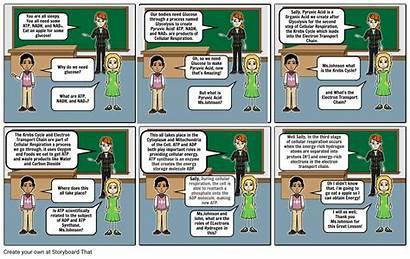 Comic Strip Respiration Cellular Storyboard Copy Storyboards