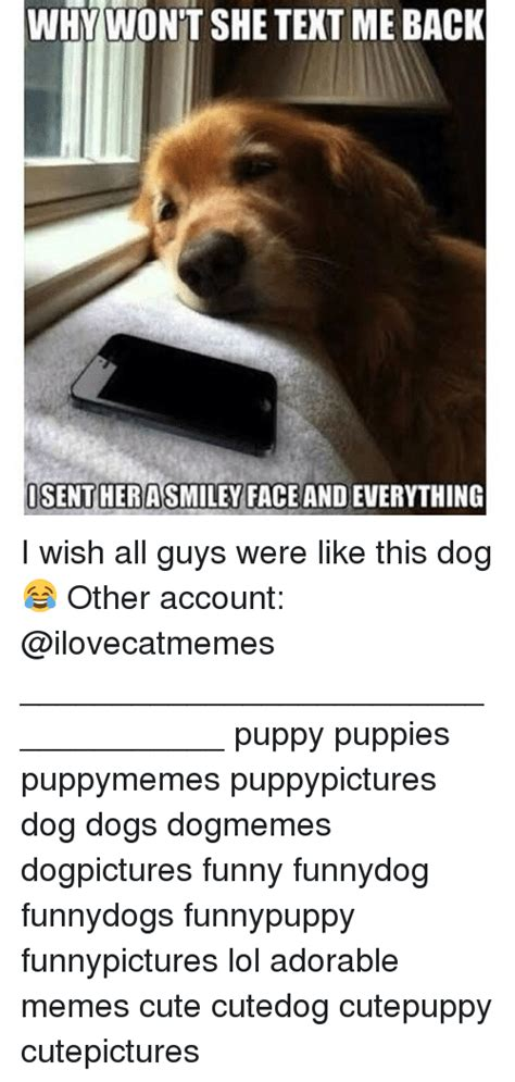 Accountant Dog Meme - why wont she text meback isentherasmiley face and everything i wish all guys were like this dog