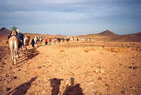 Pictures of Hoggar Algeria