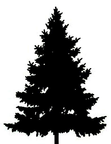 fir tree silhouette clipart best