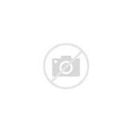 Image result for site:kursy-kosmetologov.ru
