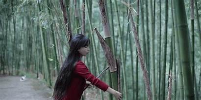 Zongzi Bamboo Liziqi Days Fan