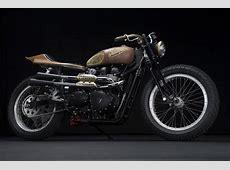 Sarah Lahalih's Steampunk Leather and Wood Triumph