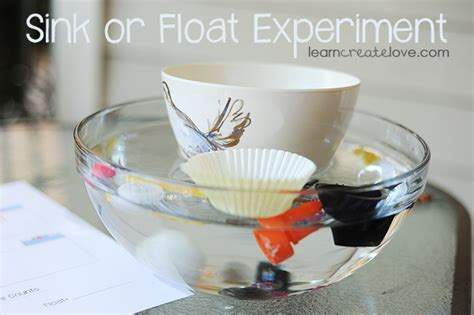 sink or float experiment sink or float experiment with printable