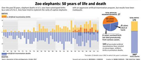 glamour beasts  dark side  elephant captivity