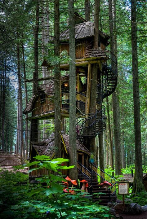 pics of cool tree houses 20 awesome treehouses that will astound you hongkiat