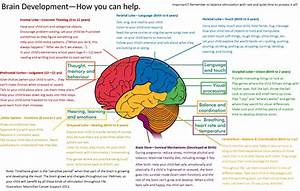 Brain Map   More Good Days – Parenting Blog