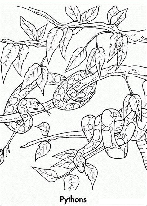Lade dir die malvorlagen jetzt kostenlos herunter. Malvorlagen fur kinder - Ausmalbilder Waldtiere kostenlos ...