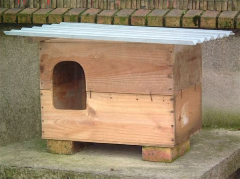 cabane exterieure pour chat abris pour chats 224 faire soi m 234 me belleplanete