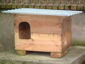 Maison Pour Chat Extérieur : chats errants comment les prot ger du froid rem des ~ Premium-room.com Idées de Décoration