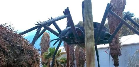 north palm springs ca volkswagen vw beetle spider
