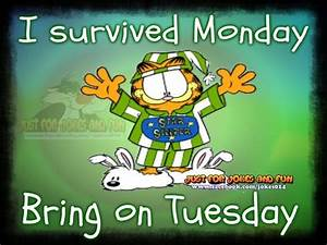 I Survived Monday, Bring On Tuesday Pictures, Photos, and ...