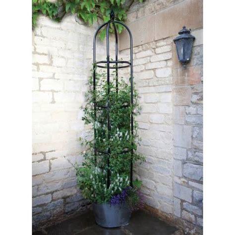 ob 233 lisque pour plantes grimpantes york 220 cm vente