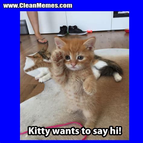 Cat Memes Clean - clean cat memes 28 images clean funny cat memes cat memes clean memes the best the most