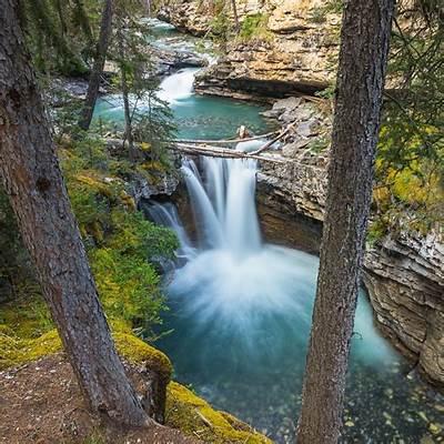 Johnston Canyon Walk - Douglas Fir Resort & Chalets Banff