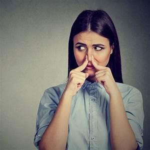 Mittel Gegen Mundgeruch : mundgeruch nat rliche mittel gegen mundgeruch shytobuy de ~ Udekor.club Haus und Dekorationen