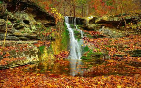 Waterfall Autumn Lovely Stream Fall Nature Leaves