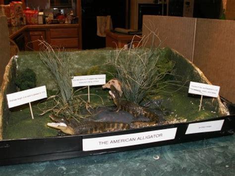 aligator project success story school project