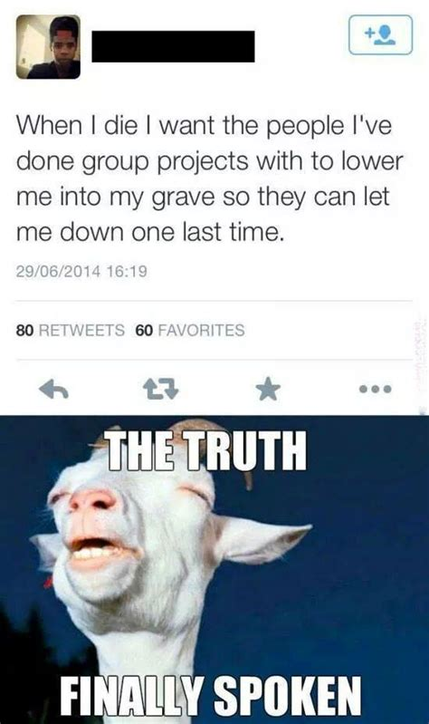 Group Project Memes - group project funny quotes quotesgram