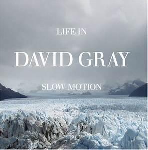 David Gray: Fun Music Information Facts, Trivia, Lyrics