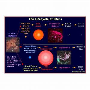 Star Formation Steps: From Star Formation to Galaxy Formation