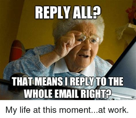 Reply Memes - reply all thatmeansireplatto the whole email right my life at this momentat work life meme on