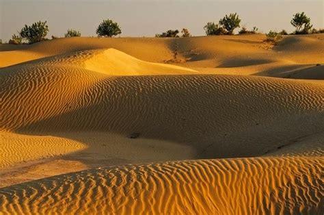 visit great thar desert