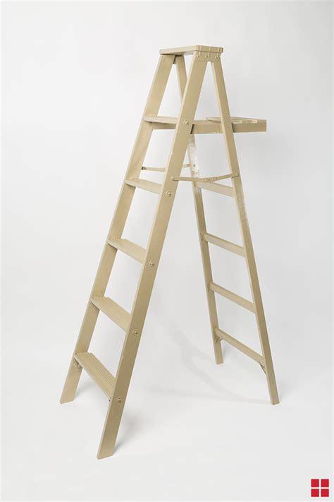 customize   ladder  spray paint