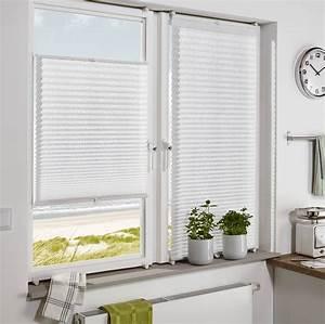 Plissee 80 Cm : easyfix plissee ausbrenner dot wei 80 x 130 cm 33895 ~ Watch28wear.com Haus und Dekorationen