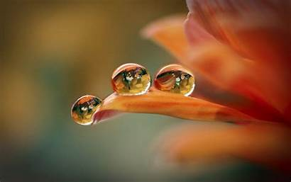Water Drop Colorful Wallpapers Wallpapers9
