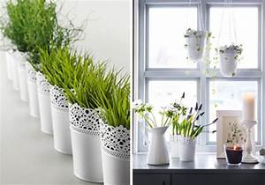 Pflanzen Fürs Bad Ohne Fenster : besonders reizvolle fensterbank deko ~ Frokenaadalensverden.com Haus und Dekorationen