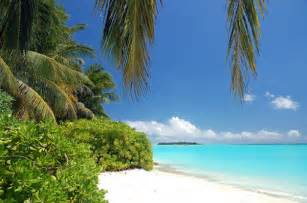 Beautiful Tropical Beach Scenes