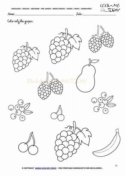 Worksheets Fruits Grapes Worksheet English Kindergarten Coloring