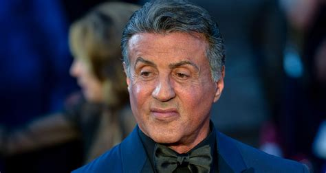 Sylvester Stallone sylvester stallone  suing warner brothers  fraud 1500 x 800 · jpeg
