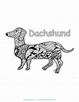 Pet Coloring Dachshund Safety Sheets sketch template