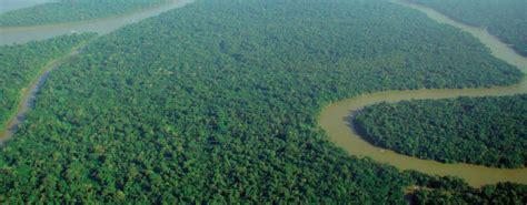 Rainforest Awareness Month Divine Organics