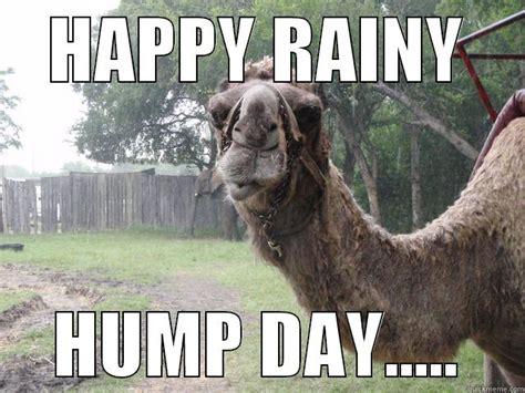 Rainy Day Meme - meme happy rain hump day graphic picsmine