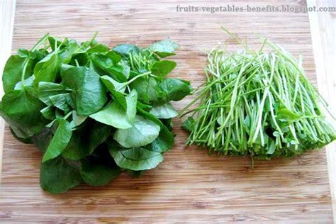fruits vegetables benefits benefits  eating watercress