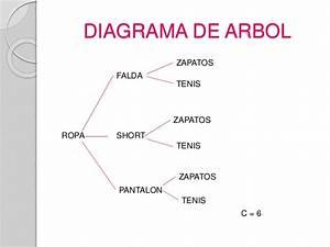 Diagrama De Arbol 2 U00b0c