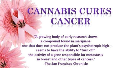 diseases   knew marijuanacannabis  cure