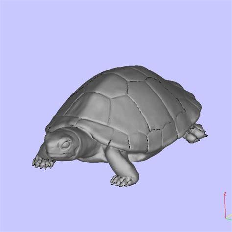 turtle  model  printable stl cgtradercom