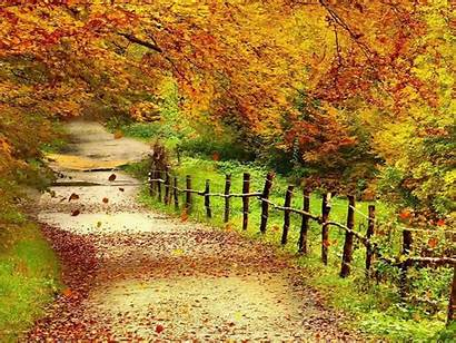 Wallpapers Scenery Autumn Wallpapers13