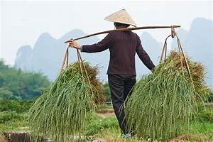 Parable of the Chinese Farmer - Jiri Pik - RocketEdge.com