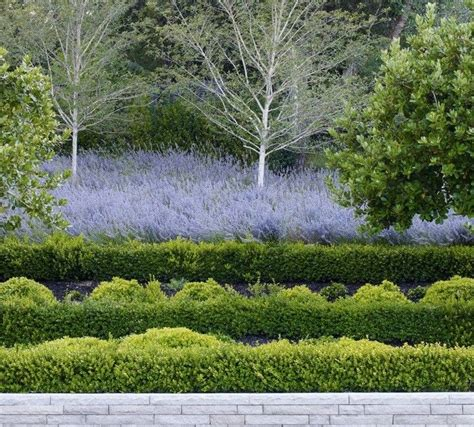 andrea cochran landscape andrea cochran landscape architecture garden inspiration pinterest