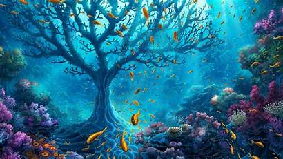 Under Sea Desktop Ocean Wallpapers Backgrounds Wallpaperaccess
